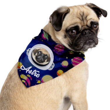 Pañoletas para Mascotas